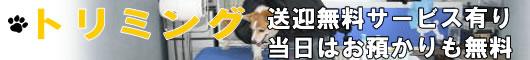 トリミング(犬の美容)
